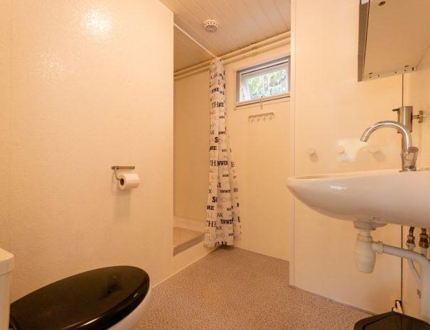 chalet-gestrand-interieur-badkamer-douche